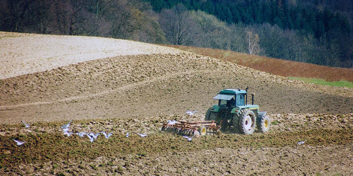 Bodenbearbeitung Scheibenegge